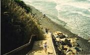 Trail, San Elijo State Beach