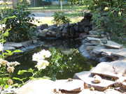 Custom Pond 2, Grants Pass, Merlin