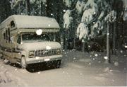 Yosemite, spring snow storm