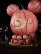 Giant Pumpkin Display, Disneyland October 2011