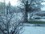 March Snow, 2012, Grants Pass OR